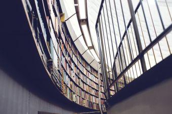 ¿Qué tan importantes son las notas de la U para para postular a un postgrado?