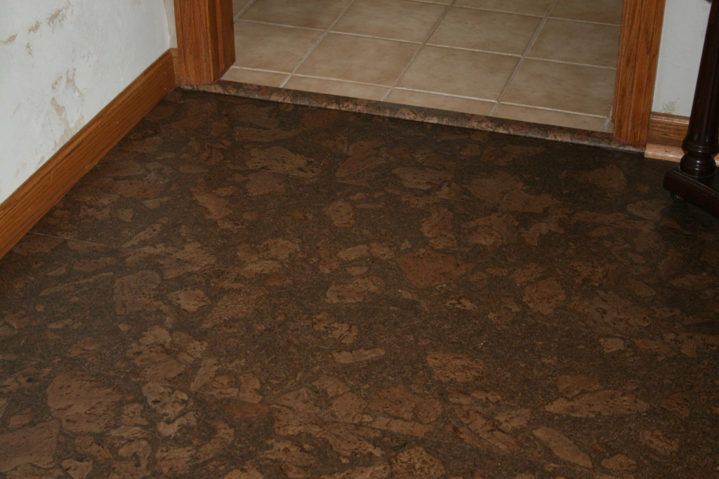 Lisbon Cork Flooring Reviews Home Design
