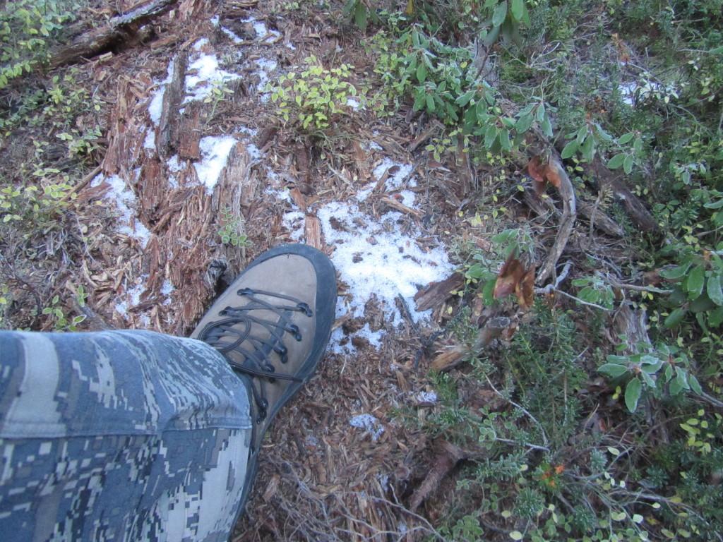 Danner Assault Boots