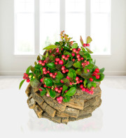 Rustic Red Berry Display