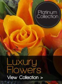 /luxury Flowers