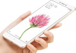 Xiaomi Mi Max Display