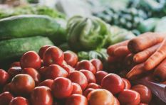 Tips on the right way to irrigate vegetables with grey water