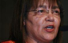 "Meet Cape town's new ""mini mayors"""