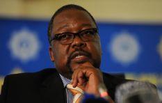 Police Minister wants Parliament to probe Ipid head Robert McBride