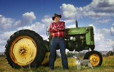 South African farmers are very old. Expect food shortages soon, warns Deloitte
