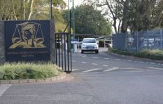 NPA, Hawks delay on #GuptaLeaks shows they are compromised, says foundation