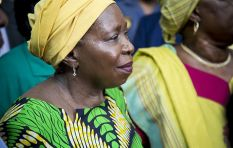 Alleged threats against Dlamini-Zuma need to be verified to grant protection