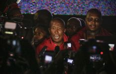 We're going to court!  - Julius Malema
