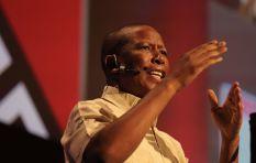 Julius Malema will run out of steam - analyst