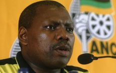 ANC's Mkhize: political party funding should come from public purse