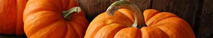 Budget Friendly Ways to Use Pumpkin This Fall