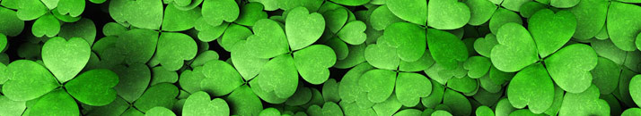 Share the Luck and Language of the Irish