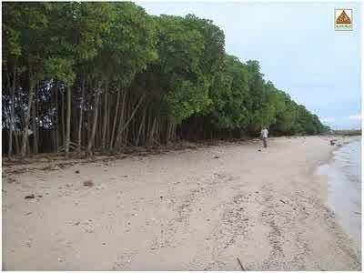 Pantai Teluk Awur Jepara