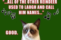 Grumpy Cat On Christmas   OMG Cute Things