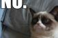 Grumpy Cat Meme 1png