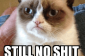 Grumpy Cat Welcome To I Love To Laugh