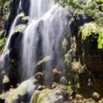 tumalog-falls-cebu-bohol-adventure-3_duyq0m