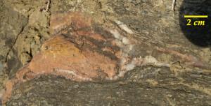 Uno dei noduli a Mn. Notare le figure disegnate dall'orientamento dei cristalli nella deformazione (boudins)