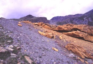 L'affioramento delle rocce carbonatiche associate alla faglia