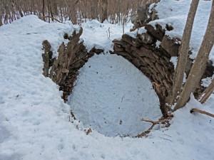 6. Il primo forno, intorno a quota 1100 m, a valle del sentiero. La parte a valle è crollata.
