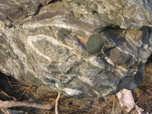 7. Nodules de pyroxène sodique vert inclus dans la roche