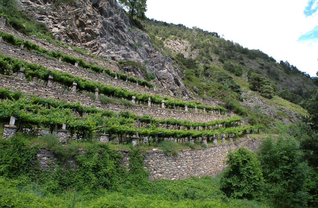 Cosa sono i terrazzamenti – Cemento armato precompresso