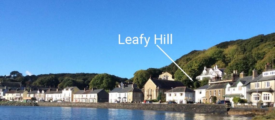 Leafy Hill