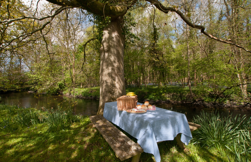 Ceredigion luxury holiday cottage - river