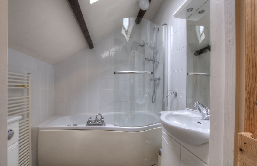 Pet friendly cottage Ceredigion - bathroom