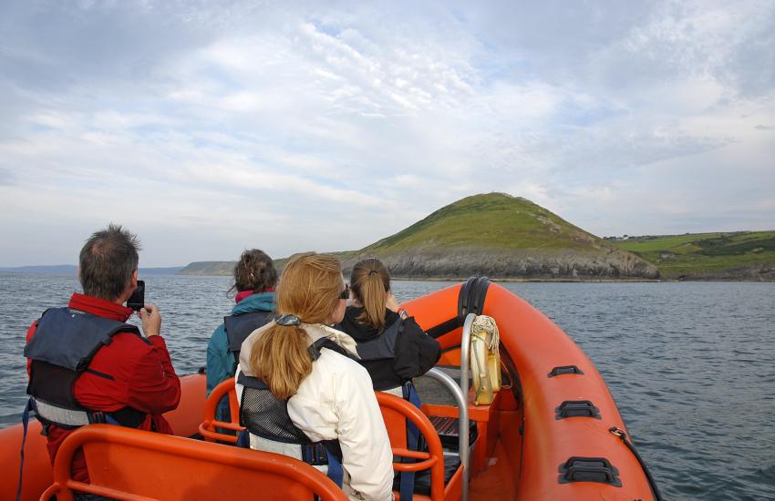 Cardigan Bay boat trip