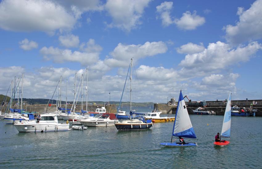 Saundersfoot Harbour - regular boat trips