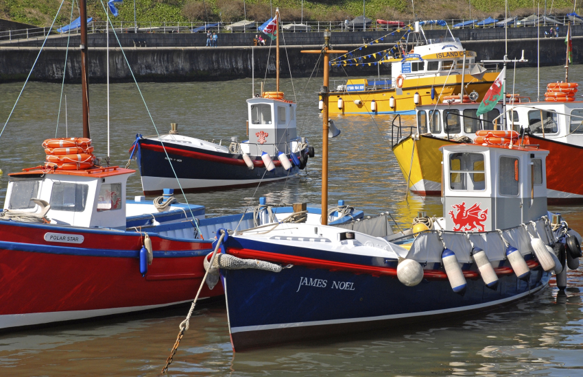 Tenby harbour to Caldey Island home to Cistercian Monks