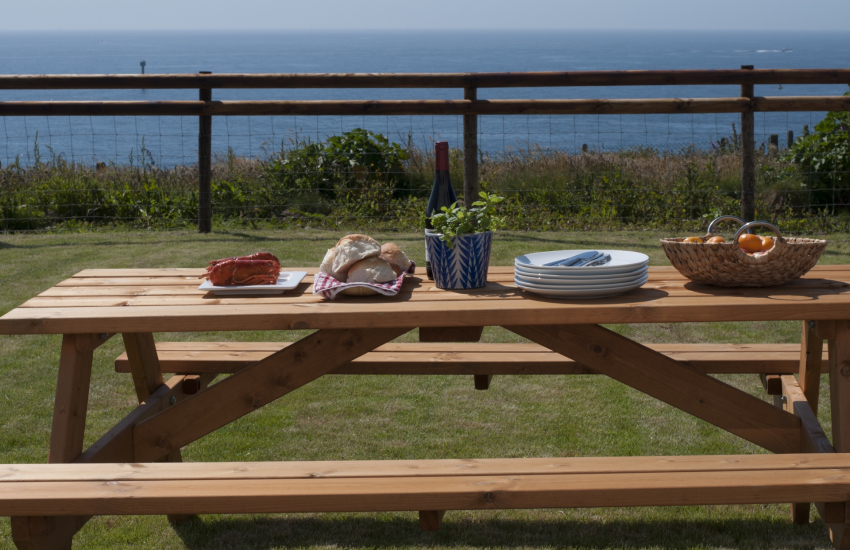 Pet friendly Pembrokeshire cottage - garden