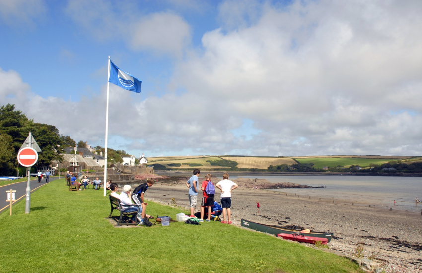 Dale's Blue Flag beach