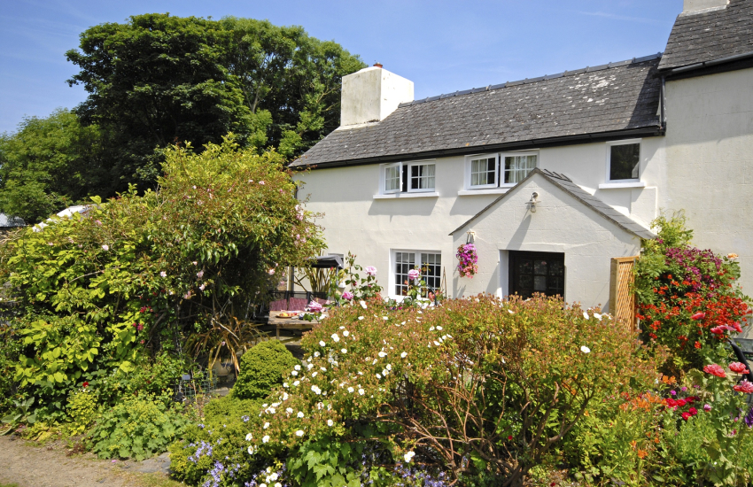 Strumble Head cottage with pretty gardens - pets welcome