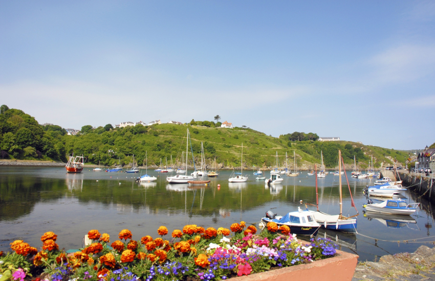 Lower Town Harbour, Fishguard