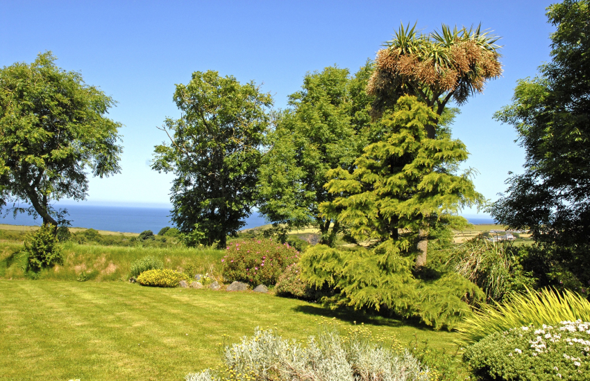 Gardens with views to Trefin and the sea