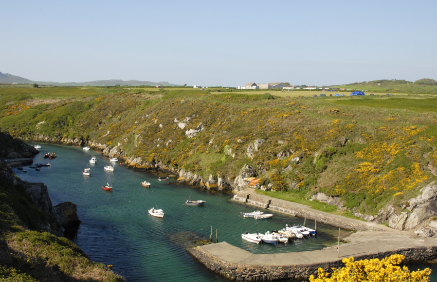 Porthclais harbour  on The Pembrokeshire Coast