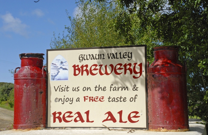 Bluestone Brewery and Gwaun Valley Brewery are run by young brewers