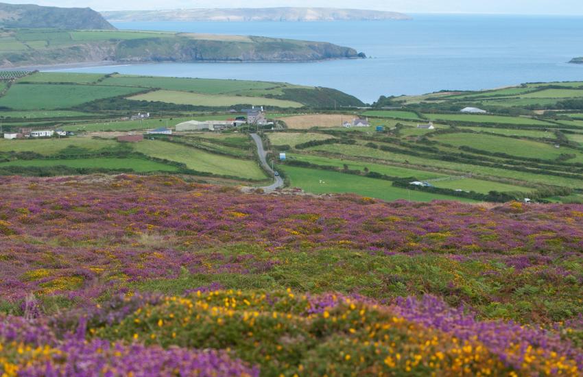 Coastal path Aberdaron