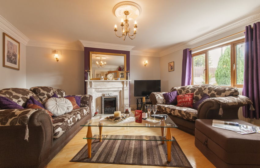 Newcastle Emlyn holiday home - living room with electric coal feature fire