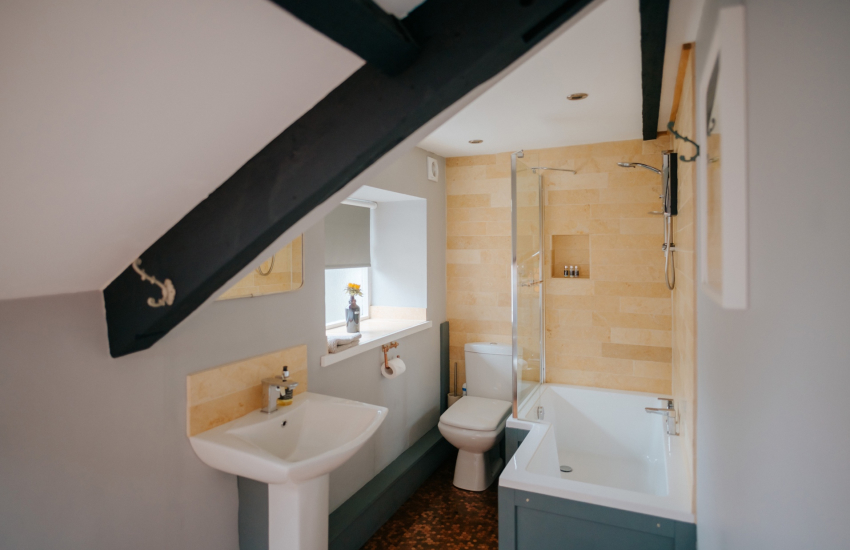 Llandeilo holiday cottage - bathroom