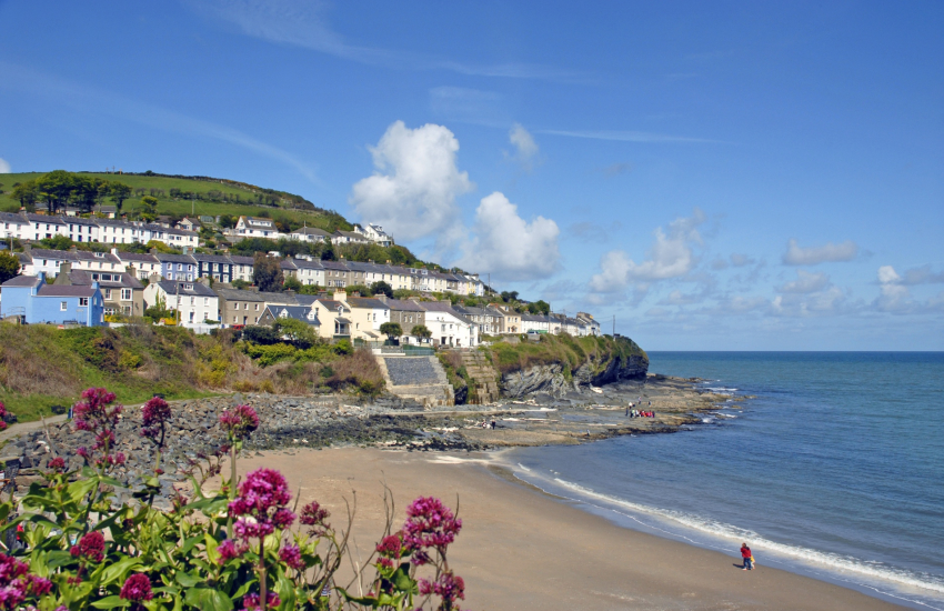 New Quay is a popular seaside resort with 3 Blue Flag beaches