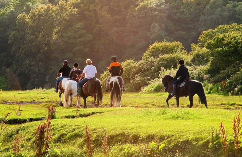 Brechfa Forest pony trekking with Five Saints Riding Centre who cater for all abilities and even offer pub or picnic rides