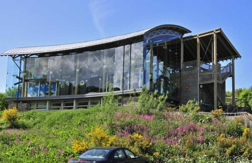 Delicious food is available at the cafe located in the amazing curved-glass visitors centre at The Welsh Wildlife Centre, Cilgerran