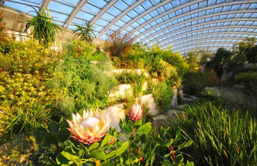 National Botanical Gardens of Wales, you'll need a whole day to explore!