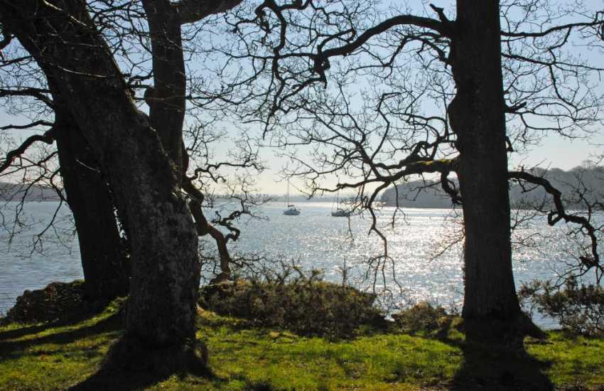 The Secret Haven Waterway has plenty of riverside trails that run through ancient woodlands