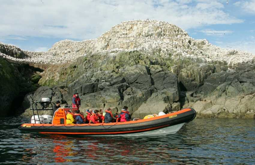 Enjoy an exhilarating sea safari out to the bird islands (Grassholm) off the Pembrokeshire coast - a truly unforgettable holiday  experience