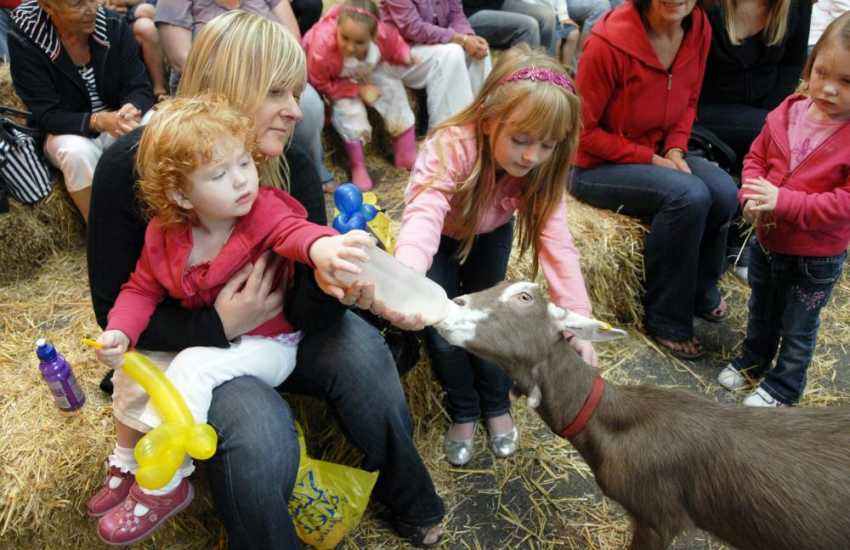 Families will enjoy a day out at Folly Farm near Tenby